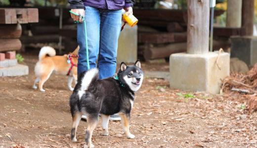 入場料無料!神奈川の服部牧場で愛犬とバーベキュー♪