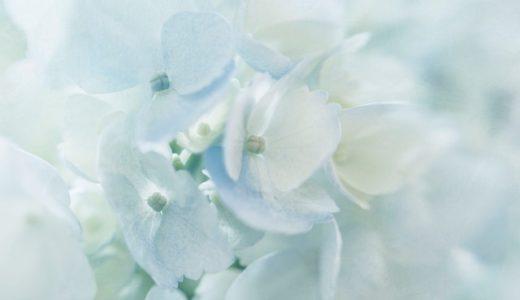 my wedding report 4 〜海に溶け込むブルーのドレス〜