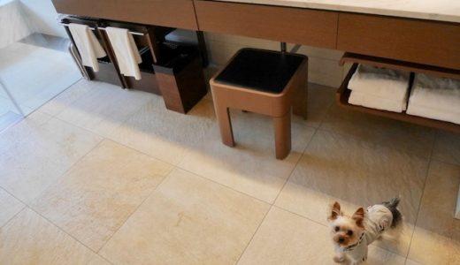 愛犬むーたんと、箱根ハイランドホテルに泊まった感想